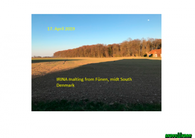 Malting barley Denmark 2019-1